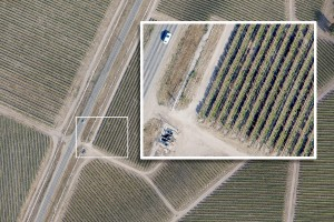 SkyIMD high resolution aerial image of a vineyard